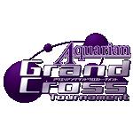 アクエリアンエイジグランドクロストーナメント2013開催決定!